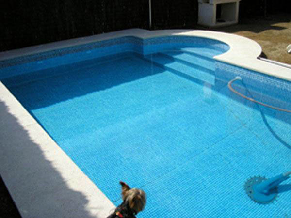 Piscina Pool Design