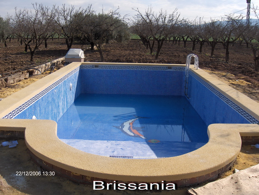 Foto piscina rectangular con coronacion ocre for Construccion piscinas zaragoza