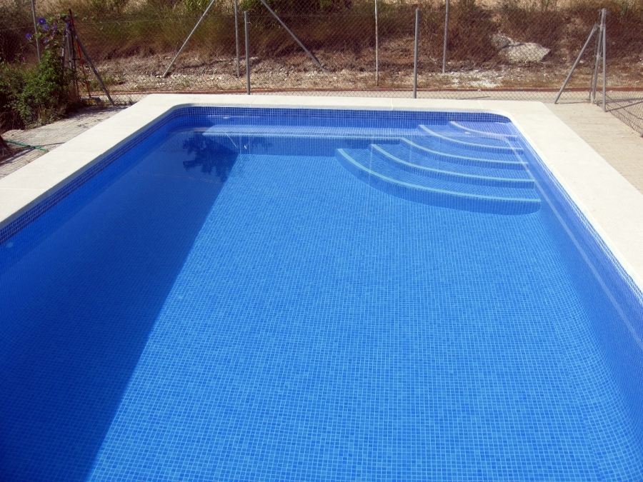 Foto piscina rectangular con escalera y banco de piscinas for Escaleras piscina para personas mayores