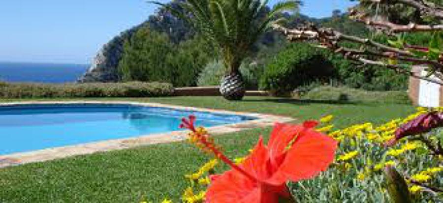 Foto piscina y jardin de mar pau manteniments reformas y for Piscinas jardin cordoba