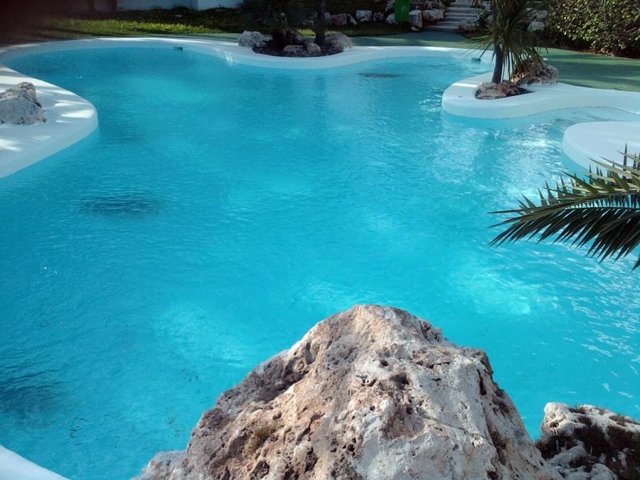 Foto piscinas de formas de mar n construccions serveis for Formas de piscinas