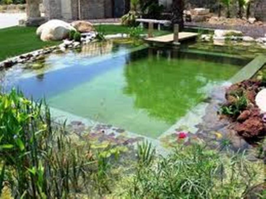 Foto piscinas naturales de instituto t cnico en for Piscinas naturales bolonia cadiz