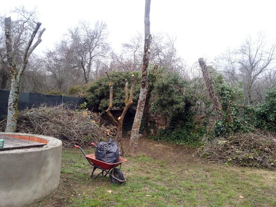 Foto poda y corte para le a de home garden works 480963 habitissimo - Lena majadahonda ...