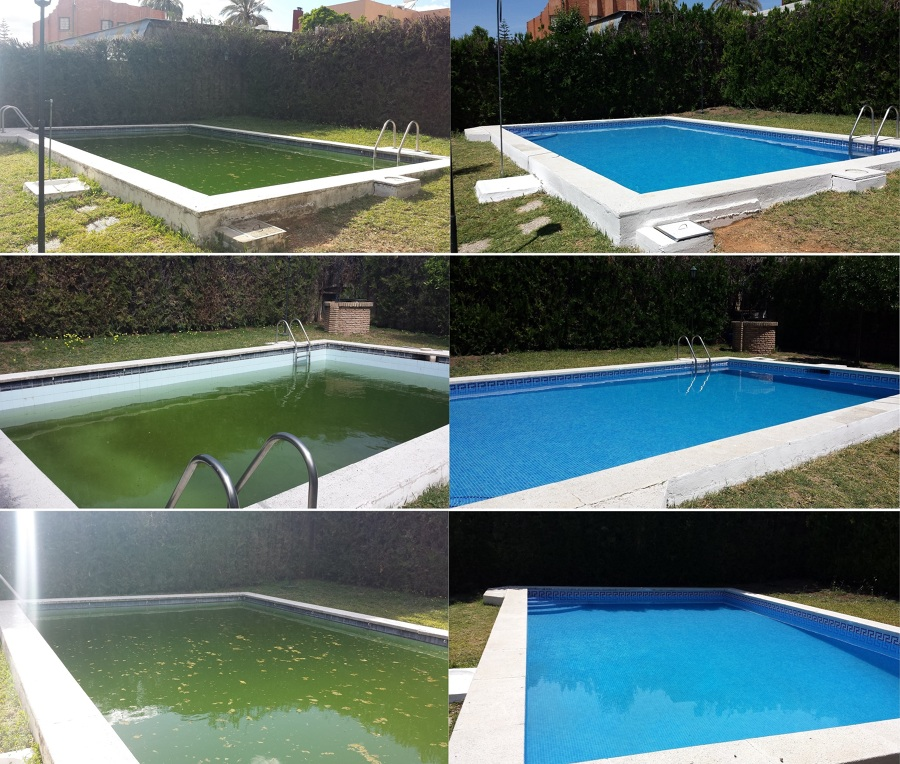Foto reforma integral de piscina de serqualia for Vaciado de piscina