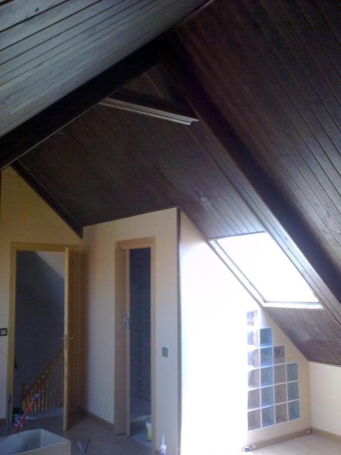 Reforma total de una buardilla-tarima-puerta,friso en thechos,baño,paredes cristal