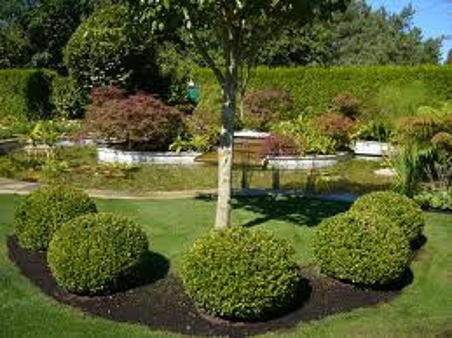 Foto relax de plm s l 754020 habitissimo - Trabajo jardineria madrid ...