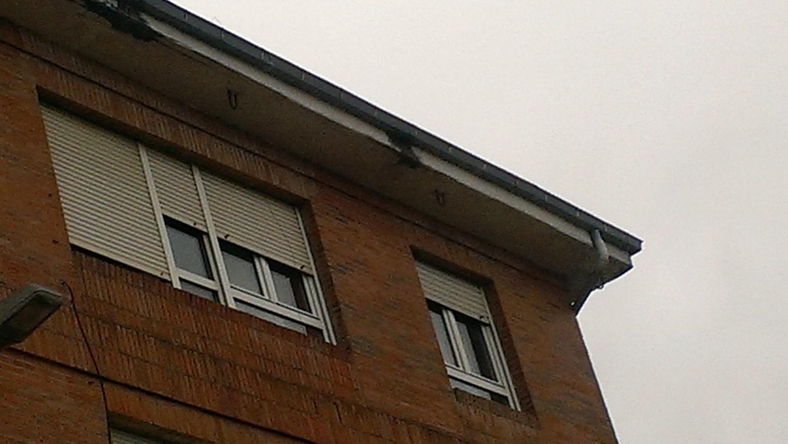 Foto reparacion tejados y aleros de saferian lion s l for Tejados y fachadas vizcaya