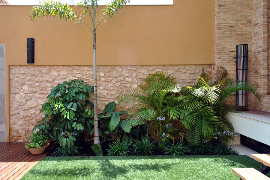 Rincón tropical en terraza