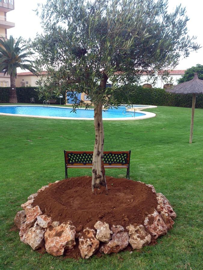 Foto rocallas para plantas de jardines pablo 430734 for Plantas para rocallas