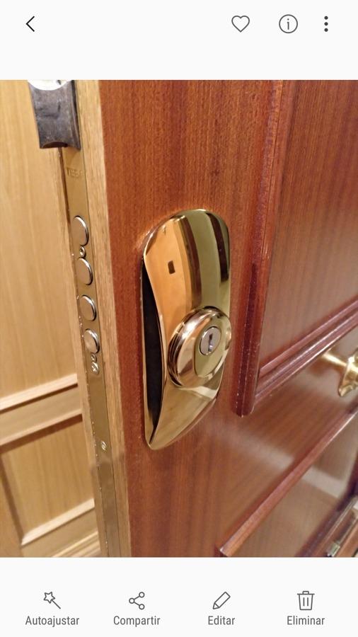 Escudo linceSQDO en puerta blindada color sapely