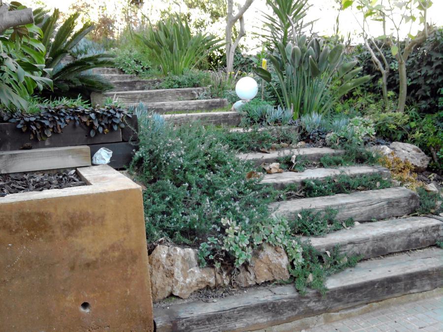 Foto servicios de jardiner de servicios de for Servicios de jardineria y paisajismo