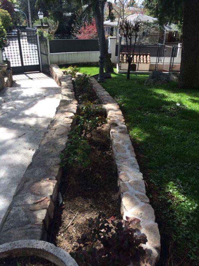 Foto servicios de jardineria de jardineria natur 580703 for Jardineria huelva