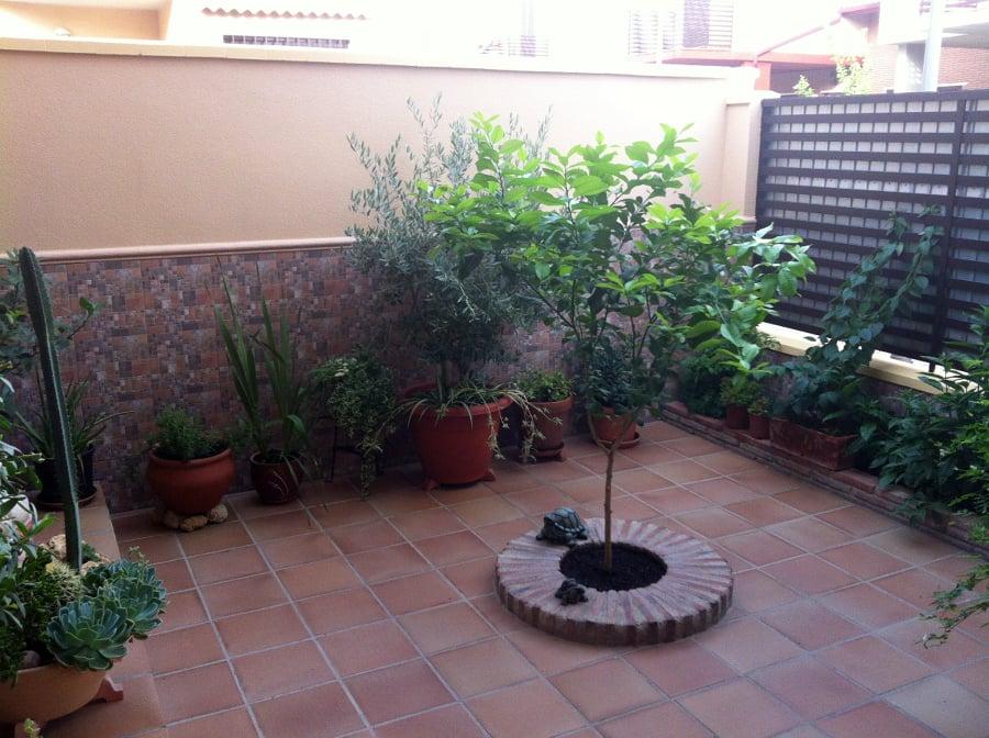 Foto solado de patio zocalo y arriate de contrucciones y - Arriate jardin ...