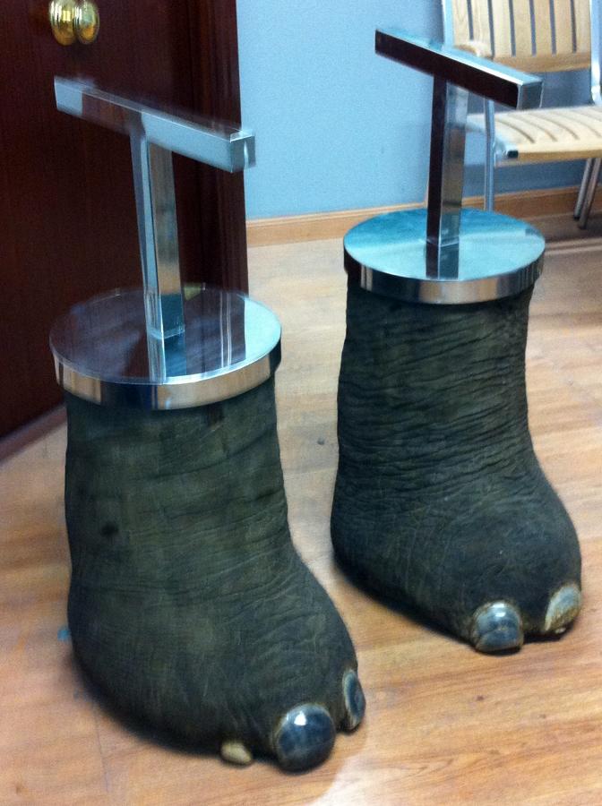 soportes en acero inox (patas de elefante)