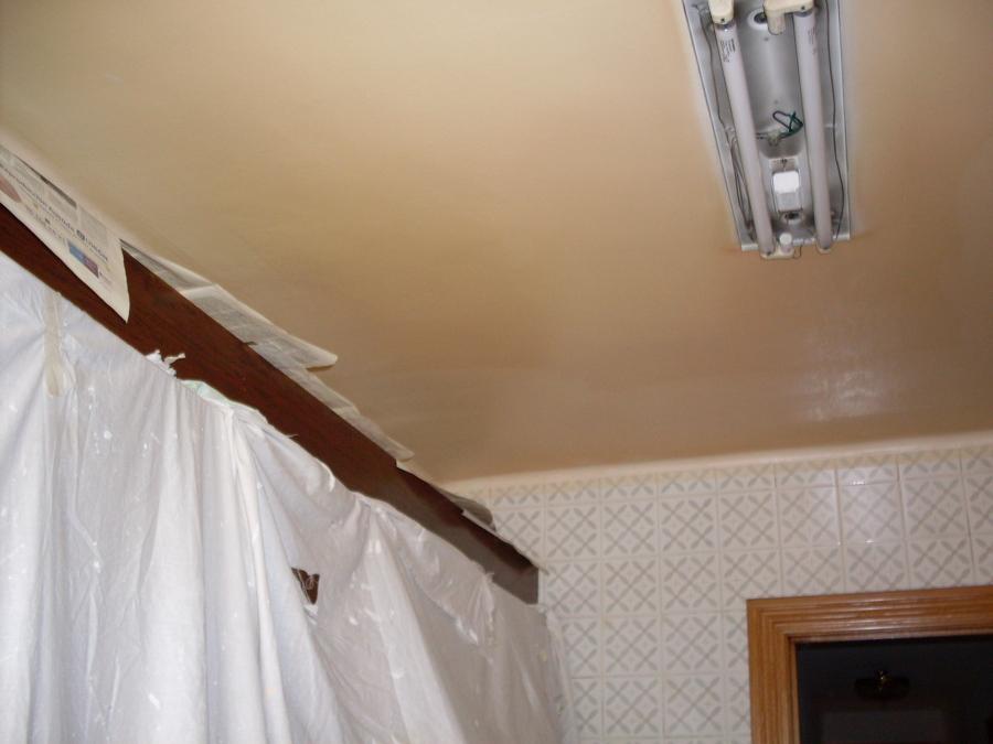 Foto techo cocina de pintura y decoraci n 606280 for Techo cocina