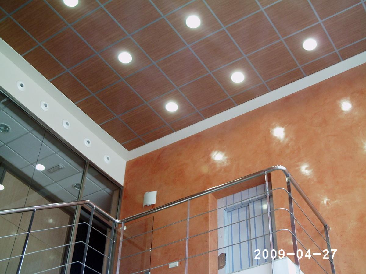 Foto techos de vinilo de rosaldur 206058 habitissimo - Vinilos para techos ...