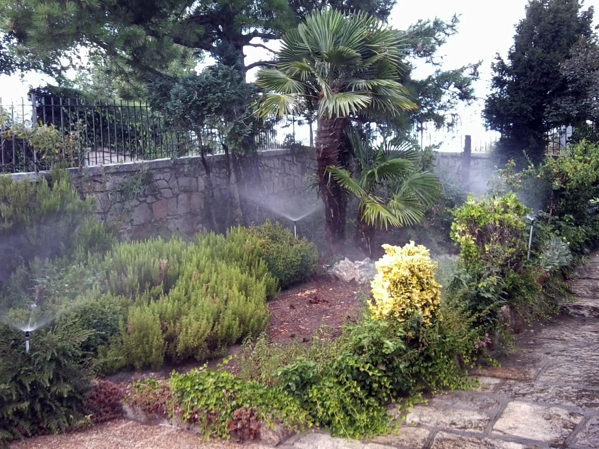 Ver fotos de jardineria 44