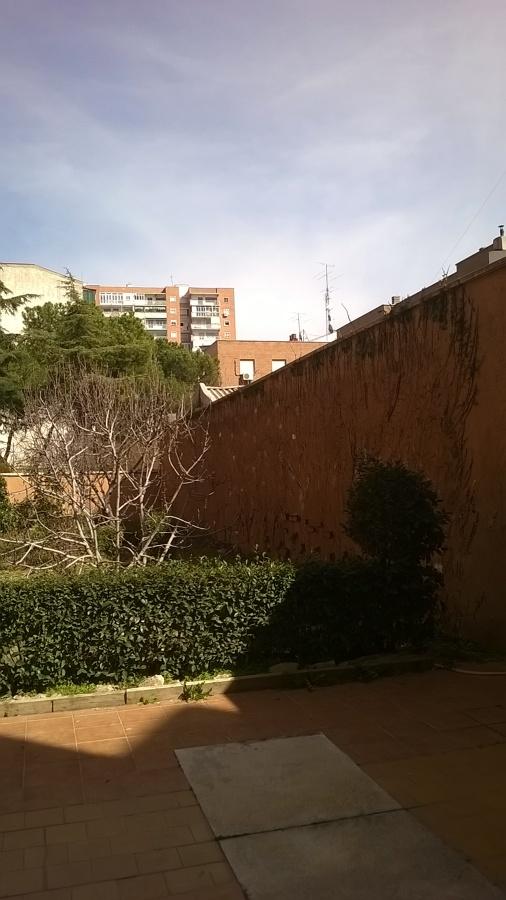 Foto hiedra terminada de alberto l pez 1562904 habitissimo for Jardines de alberto granada