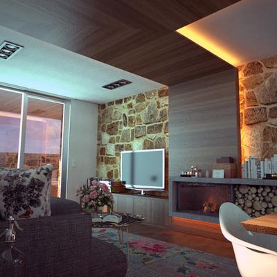 Infografía de diseño de salón en vivienda unifamiliar