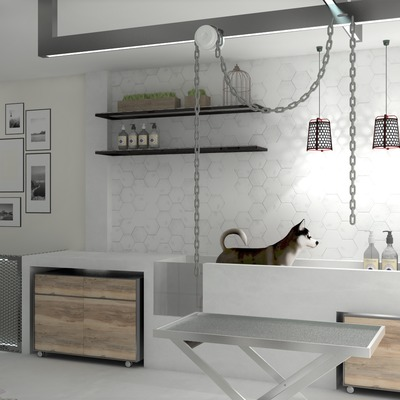 Peluquería Canina Proyecto