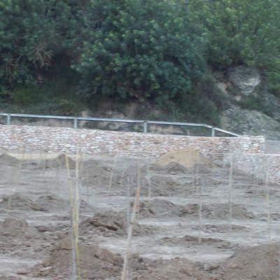 Paredes de Piedra seca en la zona de Picnic en Mora de Ebro