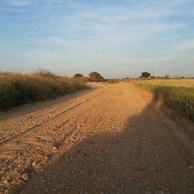 Realización de caminos