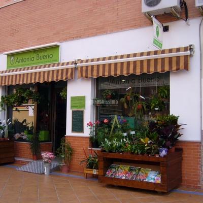 Licencias, Instalaciones Eléctricas, Reformas Locales Comerciales