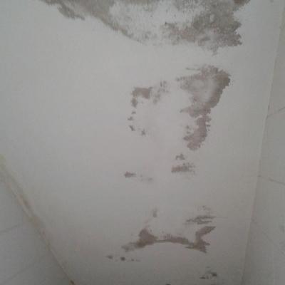lavadero interior