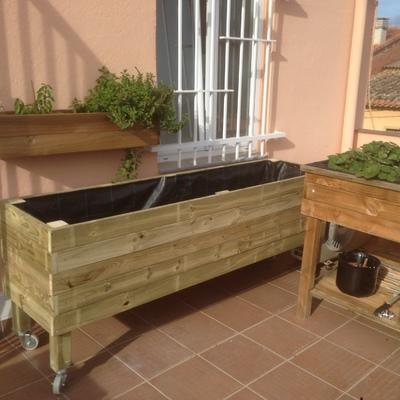 Jardinera / Huerta