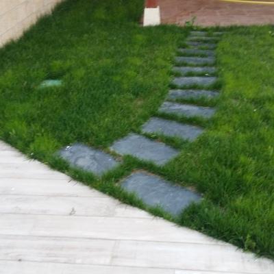 Jardin con paseo de pizarra