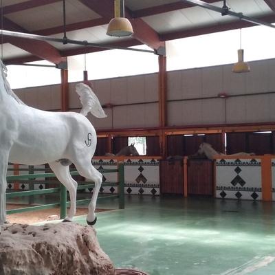 Finca de caballos