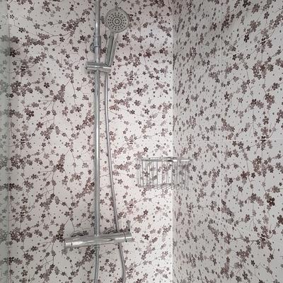Grifo Monomando para Plato de ducha