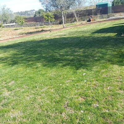 Diseñamos tu jardín desde 0