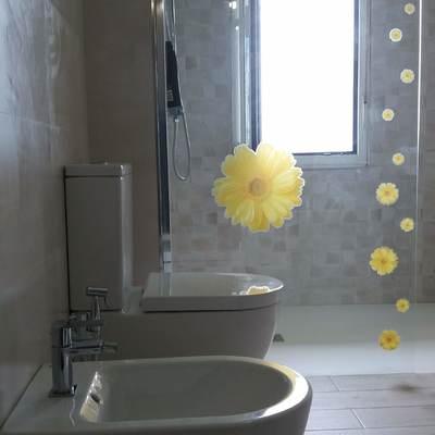 Reforma de baño, alicatado, colocación de plato de ducha y colocación de sanitarios.