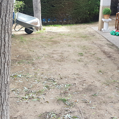 Antes jardin con cesped artificial