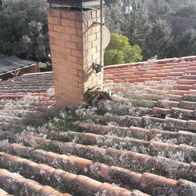 Reparación y limpieza de tejado (antes)