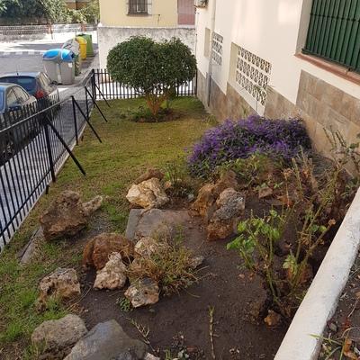 Llega la época de poda y todos nuestros jardines estan al día
