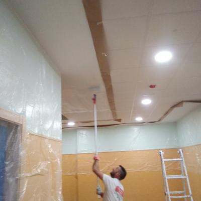 Pintando techos de colegio