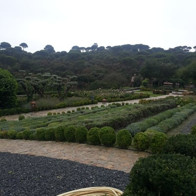 Jardinería y multiservicios