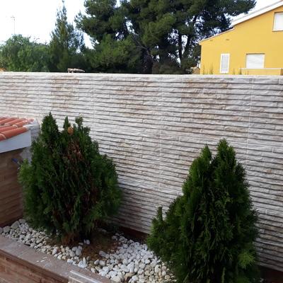 Alicatado de muro