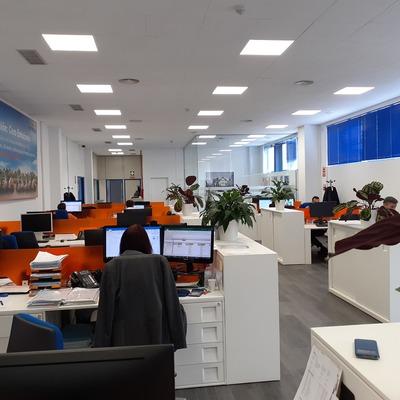 paneles absorbentes techo oficina