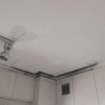 Alisado de techo