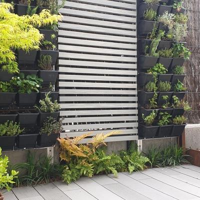 Jardines verticales de aromáticas