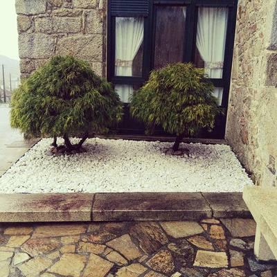 Preparación de jardín con piedras blancas