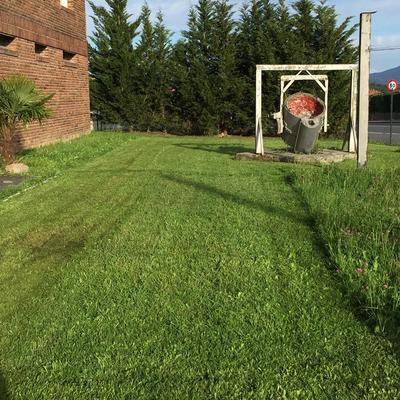 Mantenimiento jardin empresa