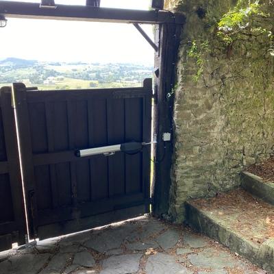 Brazo electromecánico puerta madera