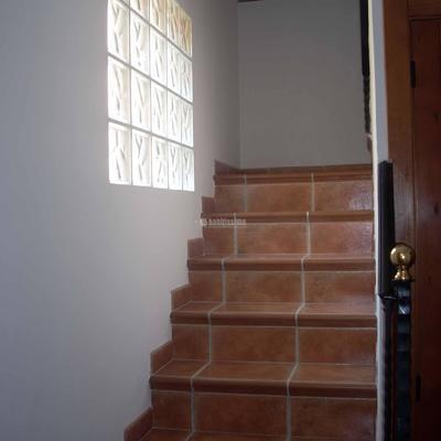 Construcción Casas, Pintores, Reformas Chalets