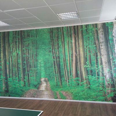 Foto mural bosque