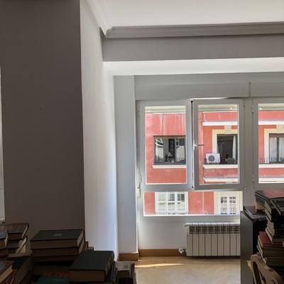 Pintura de ventanas con pintura especial para pintar sobre aluminio en blanco
