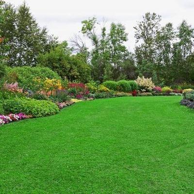 Mantenimiento jardín residencial Urbanización La Chopera